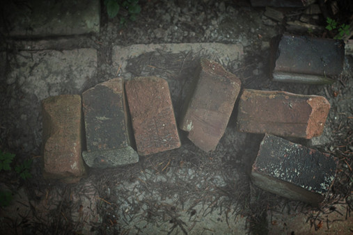 Bricks around the Institute's garden