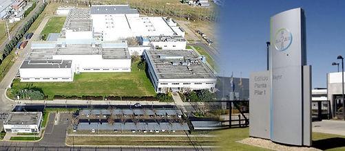 Bayer Cygnus WMS.jpg