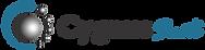 cygnus fondo trans 3.png