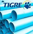 Tigre5.jpg