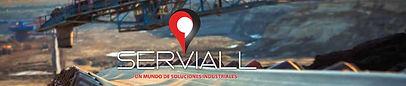 Serviall Cygnus WMS.jpg