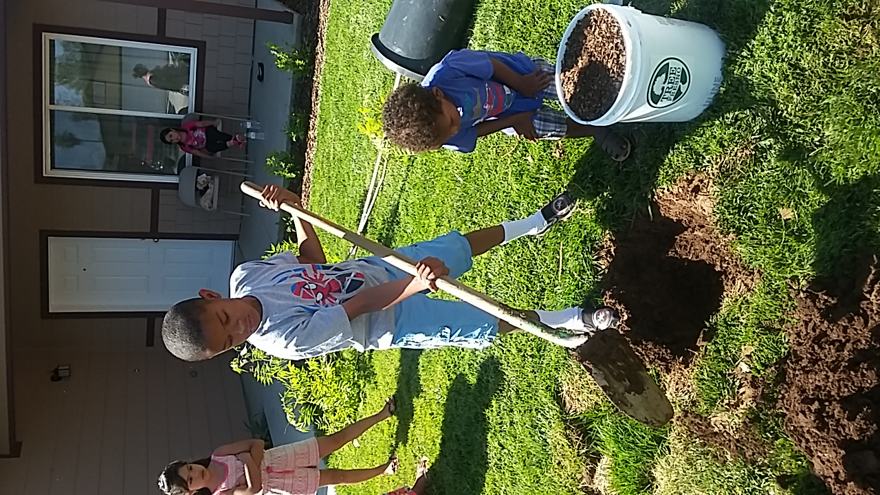 Planting Trees for Neighbors