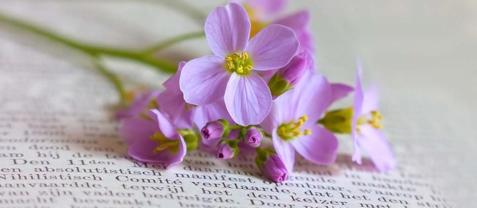 12 найбільш весняних книг