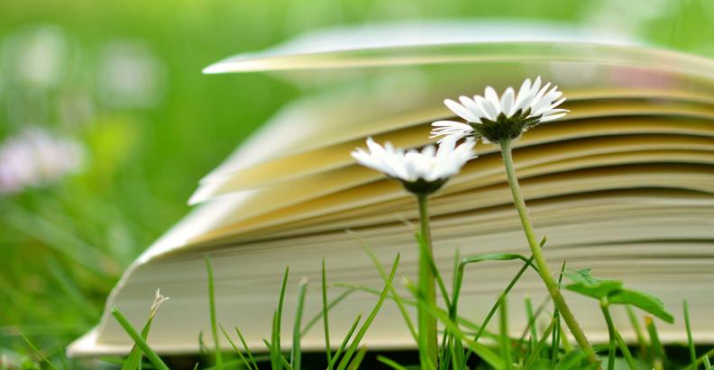 10 книжкових новинок квітня