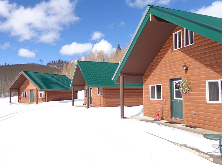 Electric Mountain Lodge Cabins
