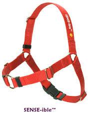 SENSE-ation harness