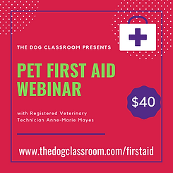 Pet First Aid 2020(2).png