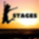 stages sanquer brest.png
