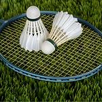 Badminton adulte sanquer.png