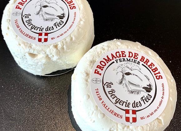 Brebis frais de Savoie fermier