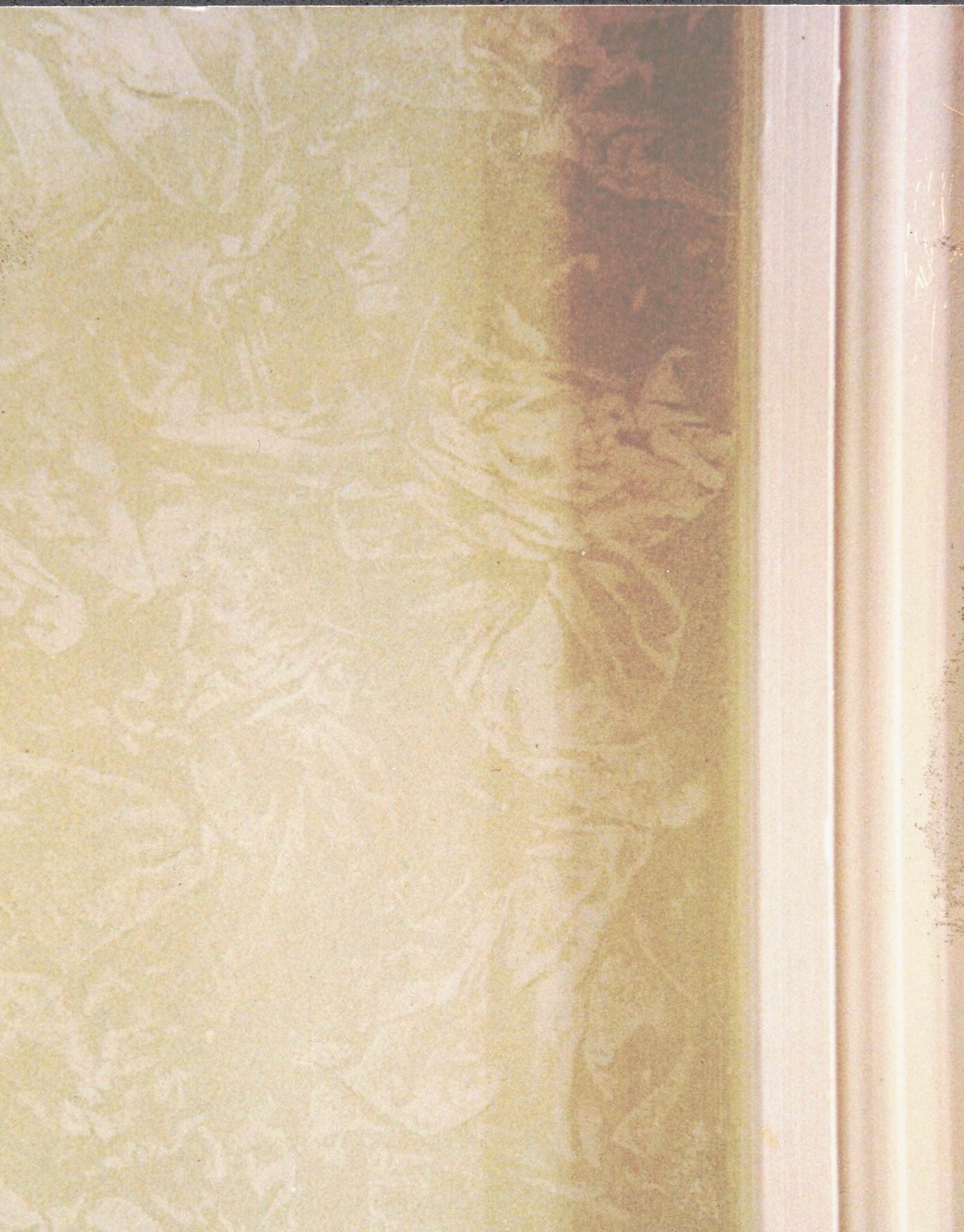 Damask wall detail