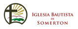 IBS Logo_1.png