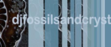 Djfossilsandcrystals.com shop now open
