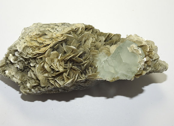 aquamarine in muscovite