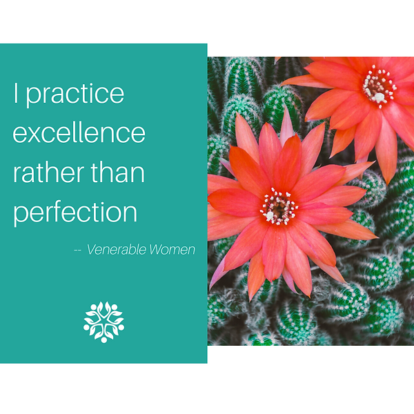 I practice excellence.png