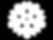 white vw logo.png