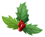 holly-2035434_1920.png