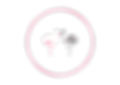 white-flamingo-parma-logo.png
