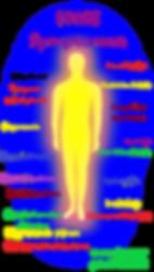 Lyme symptomen op lichaamfoto.png