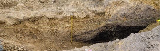 Excavation showing recent sediments abutting soft bedrock