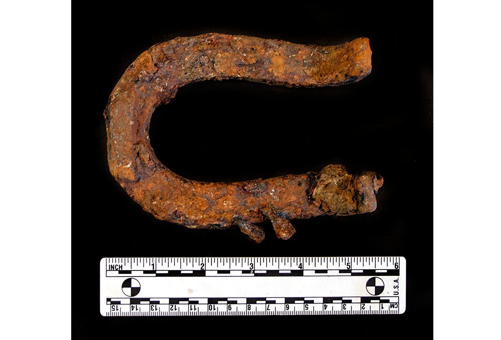 Historic mule shoe recovered from intrusive work