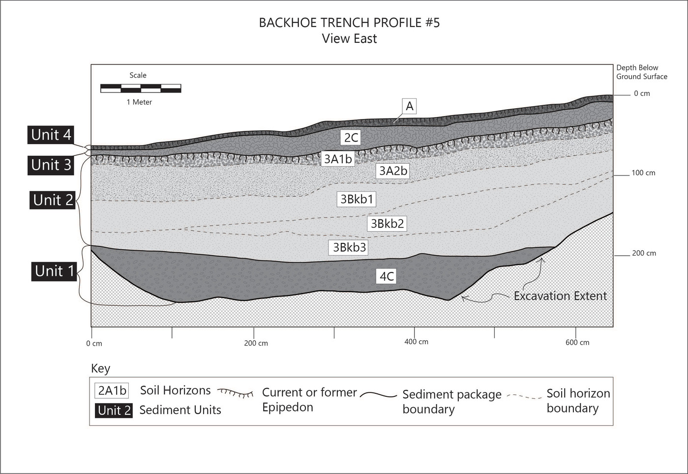 Wall profile of Trench 5 showing surface soil, paleosol and sediment units
