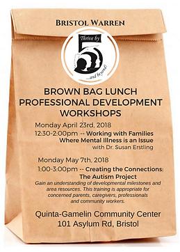 2018 Brown Bag PD.png