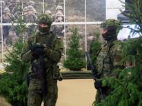Środki walki Wojsk Obrony Terytorialnej