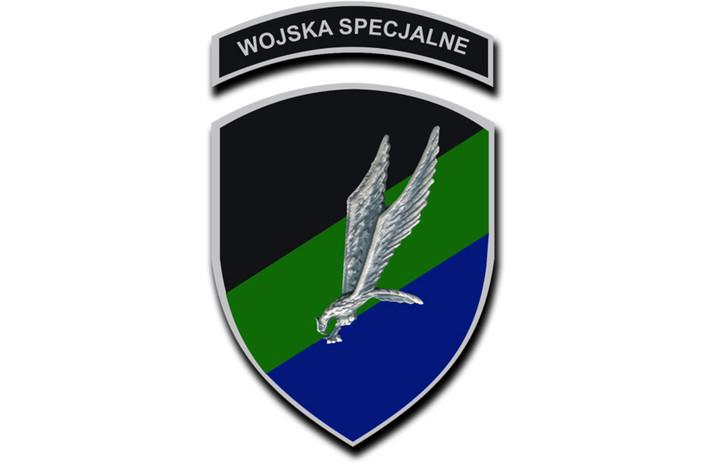 Miejsce Wojsk Specjalnych w reformowanym systemie dowodzenia 2018