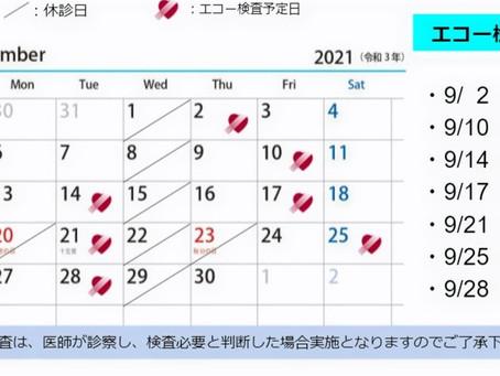 9月エコー検査日のお知らせ