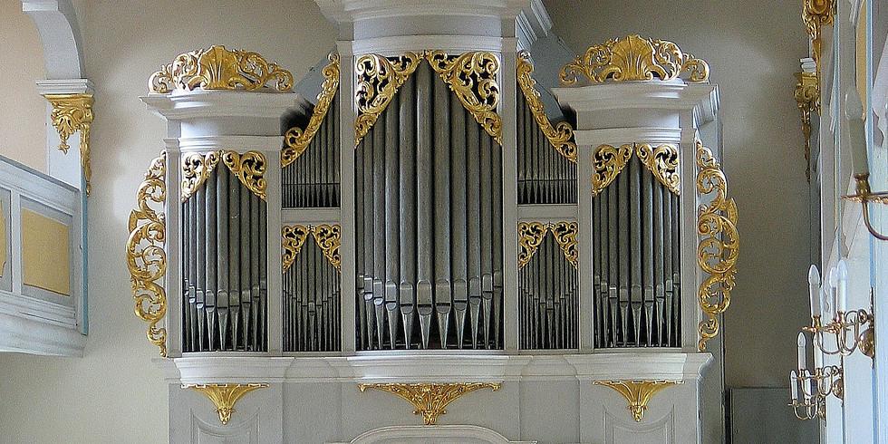 REINHARDTSGRIMMA (SACHEN), KIRCHE (SILBERMANNORGEL) - Recital