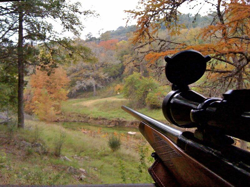 deer blind and gun ready 1109