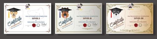 Graduate certificate design for Pawllege Pet School