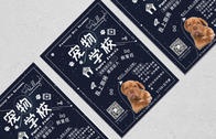 Flyer design for Pawllege Pet School