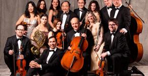 Spotlight: Canadian Sinfonietta Chamber Orchestra