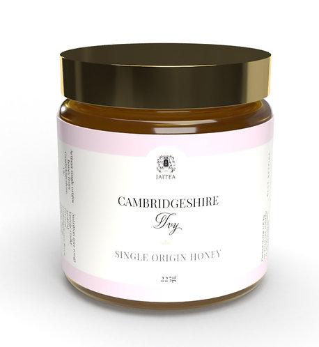 Single Origin Raw & Unfiltered Ivy Honey