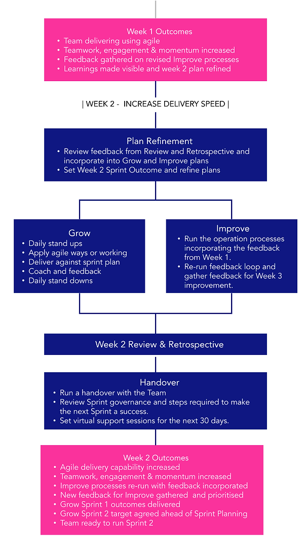 Sprint_How it works_v2 (1).png