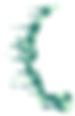 Complete-Psychological-Service-logo-6.pn