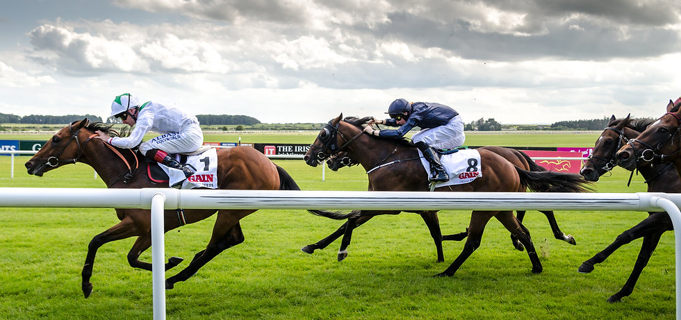 Irish_Derby_Day_2014_-_The_Curragh.jpg