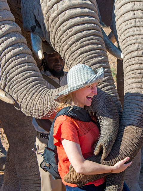 Cuddles with three elephants.