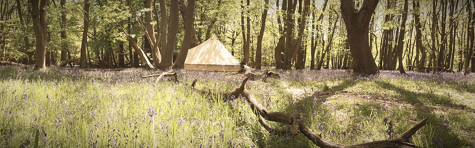 Canvas Bell Tent Woodland