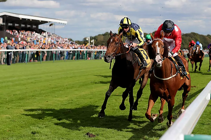 generic-close-finish-flat-race-haydock-o
