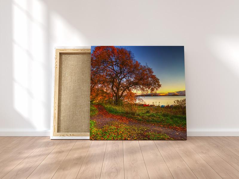 Canvas--Mockup