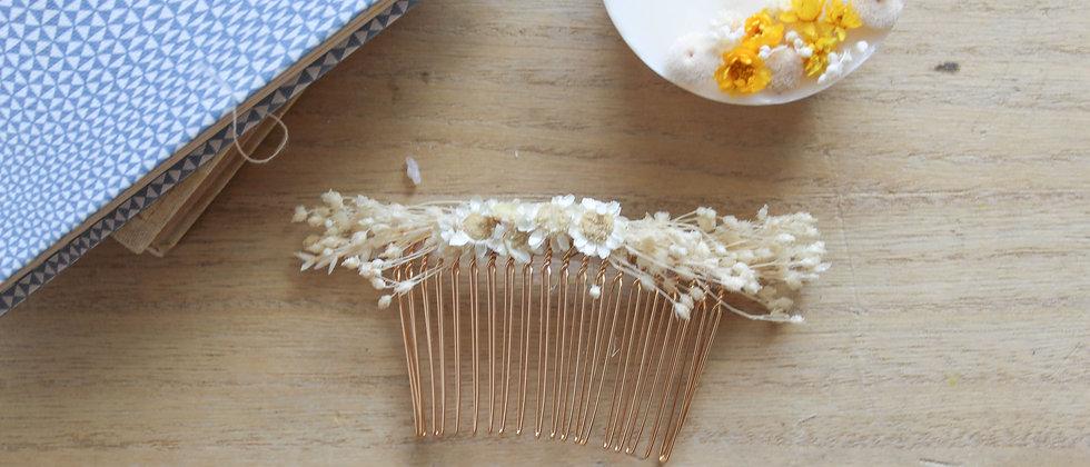 Peigne fleurs séchées (glixia et brooms)