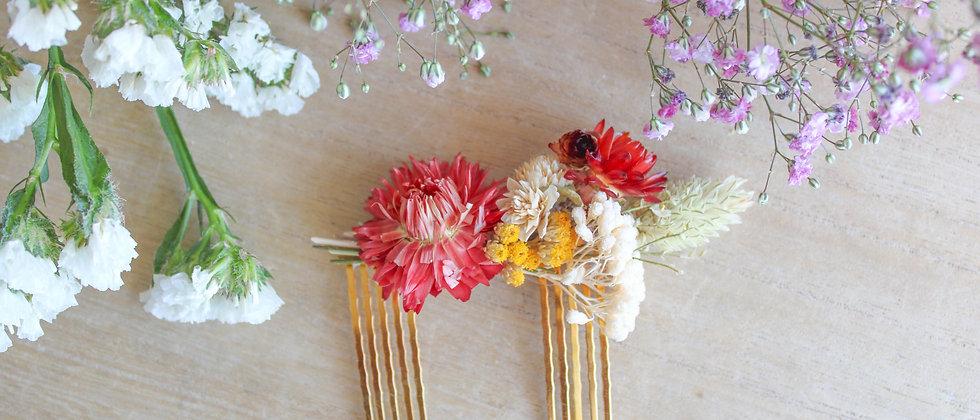 Double-peigne en fleurs séchées Iris
