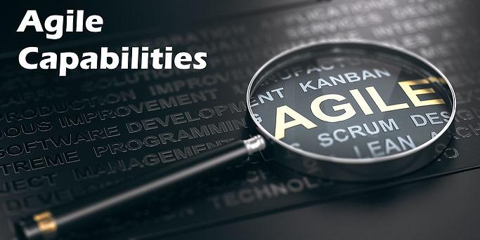 agile large.jpg