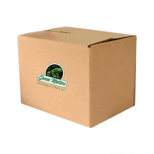 24 units master box Moringa 100% Reusable Can 40 g