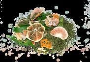 vitamin c tea PNG.png