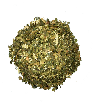 BREADFRUIT PNG.png