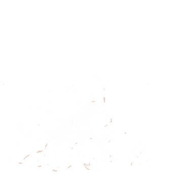 hibiscus color blanco png.png